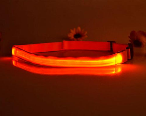 LED Running Waist Belt - Orange
