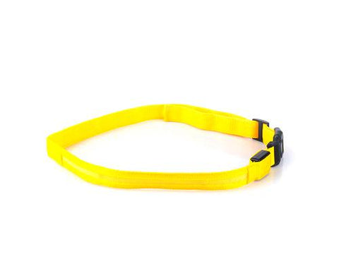 LED Running Waist Belt - Yellow