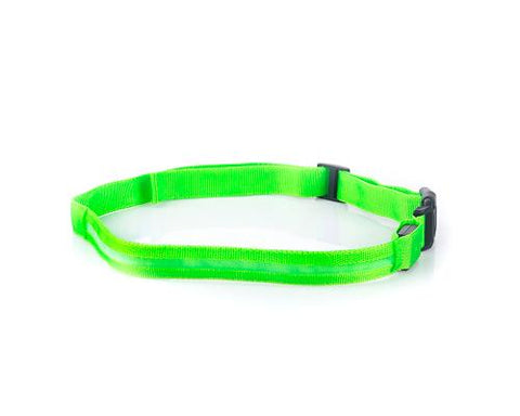 LED Jogging Waist Belt - Green