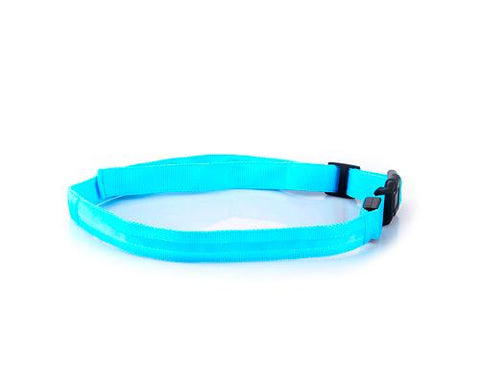 LED Jogging Waist Belt - Blue