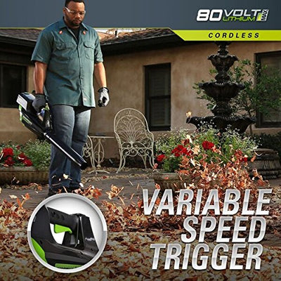 GreenWorks Pro GBL80320 80V 125 MPH - 500CFM Cordless Blower, Battery and Charger Not Included