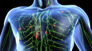 Stimulate Your Lymph System to Cleanse Your Body and Protect You From Illness