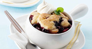 flex health and wellness recipes blueberry cobbler