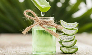 Flex health and wellness superfoods aloe