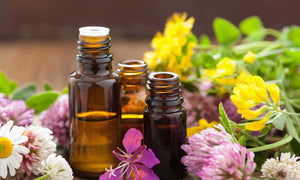 flex health and wellness products essential oils