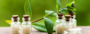 flex health and wellness products homeopathy