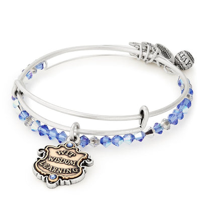 Harry Potter ALEX AND ANI HARRY POTTER RAVENCLAW Motto Set of 2 - Accio This
