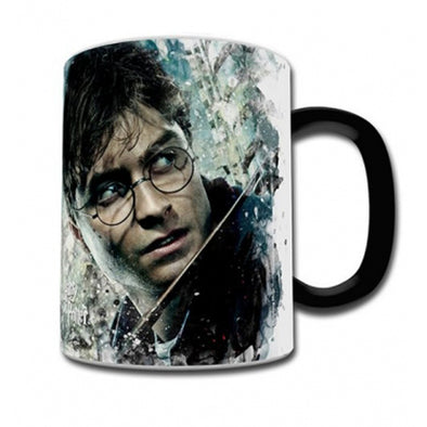 Harry Potter Harry Potter Morphing Mug - Accio This