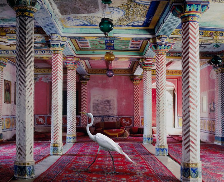 Karen Knorr for Photography on a Postcard