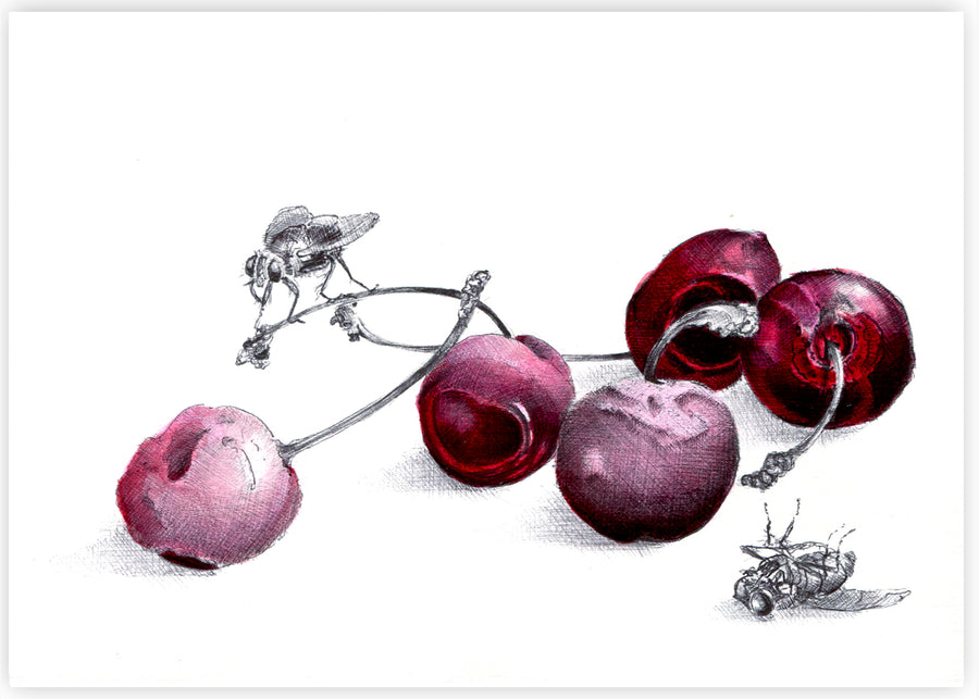 Kate Knight - Nature Morte, Rotten Cherries