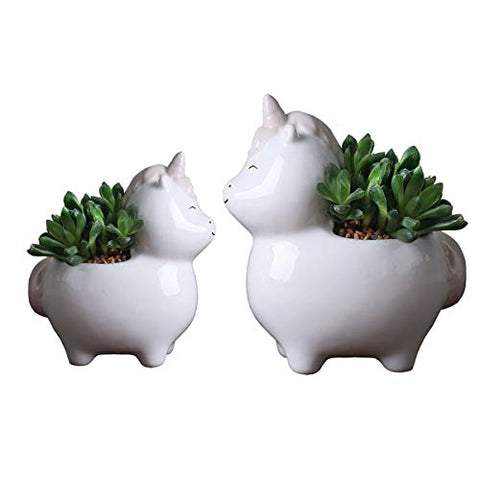 unicorn bonsai plant pot set