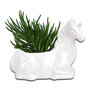 ceramic unicorn garden plant pot