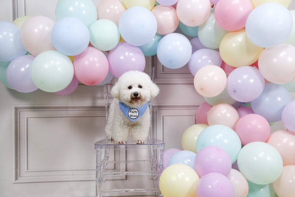 Pastel Coloured Balloons - 100 Pack | 8 Colours For Unicorn Party