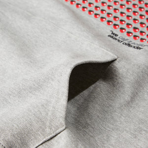 Aciid Hoody Grey Marl