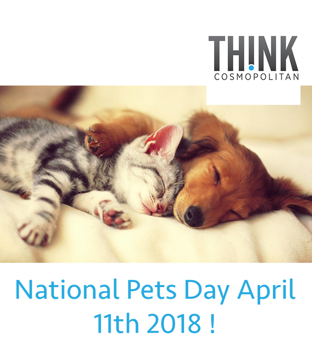 National Pets Day April 11th 2018 !