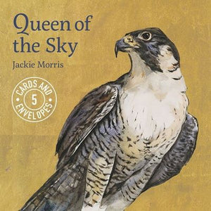 Jackie Morris- Queen of the Sky, Set of 5 Gift Cards & Envelopes