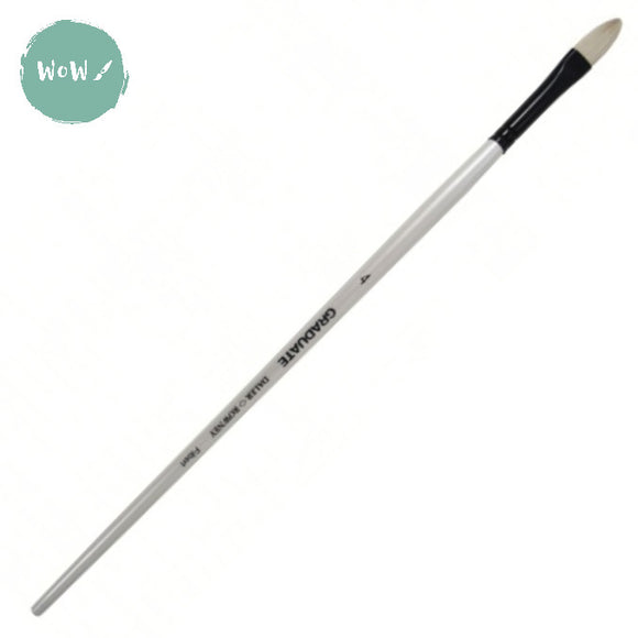 Daler Rowney Graduate Brush Bristle-  FILBERT 4 Long handle