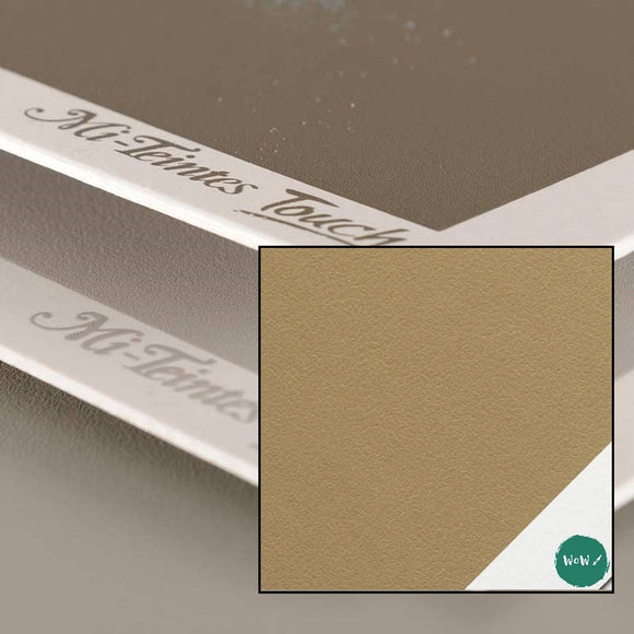 Canson Mi-Tientes Touch Sanded Pastel 350gsm sheets 50 x 65 cm - SAND