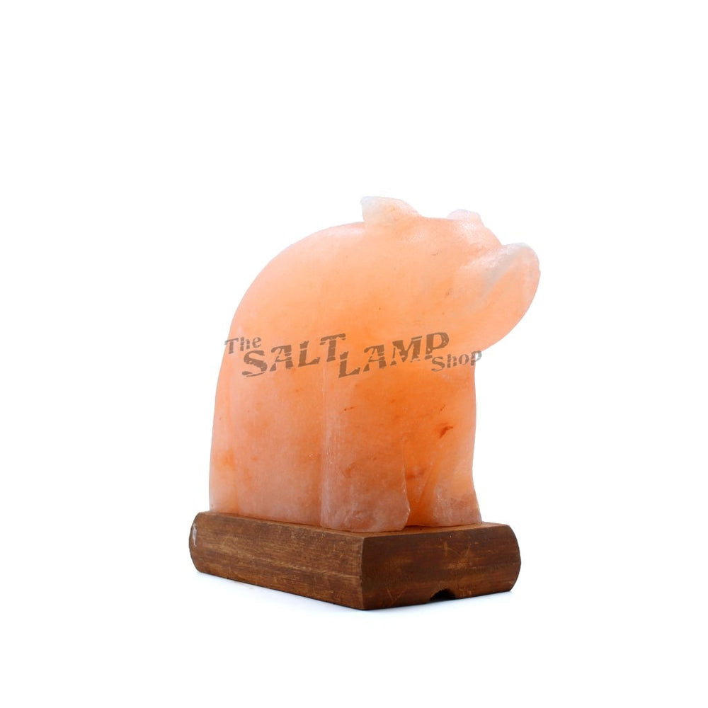 Polar Bear Salt Lamp (Timber Base) Crafted