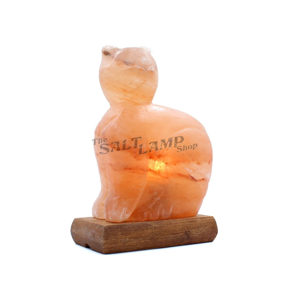 Cat Salt Lamp (Timber Base) Crafted