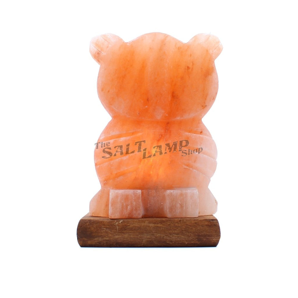Owl Salt Lamp (Timber Base) Crafted