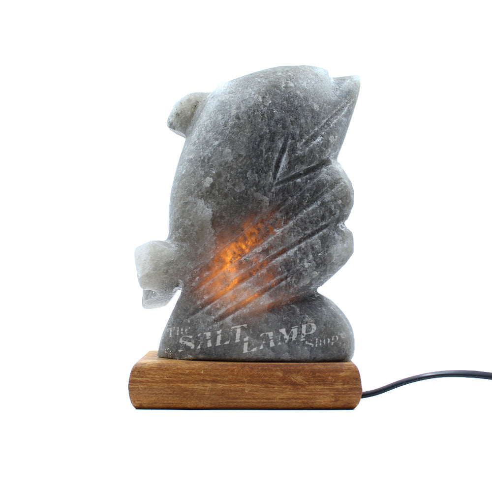 Rare Grey Himalayan Salt Dolphin Lamp (Timber Base)