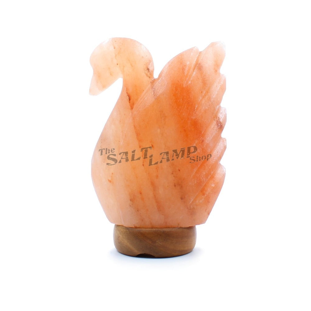 Swan Salt Lamp (Timber Base)