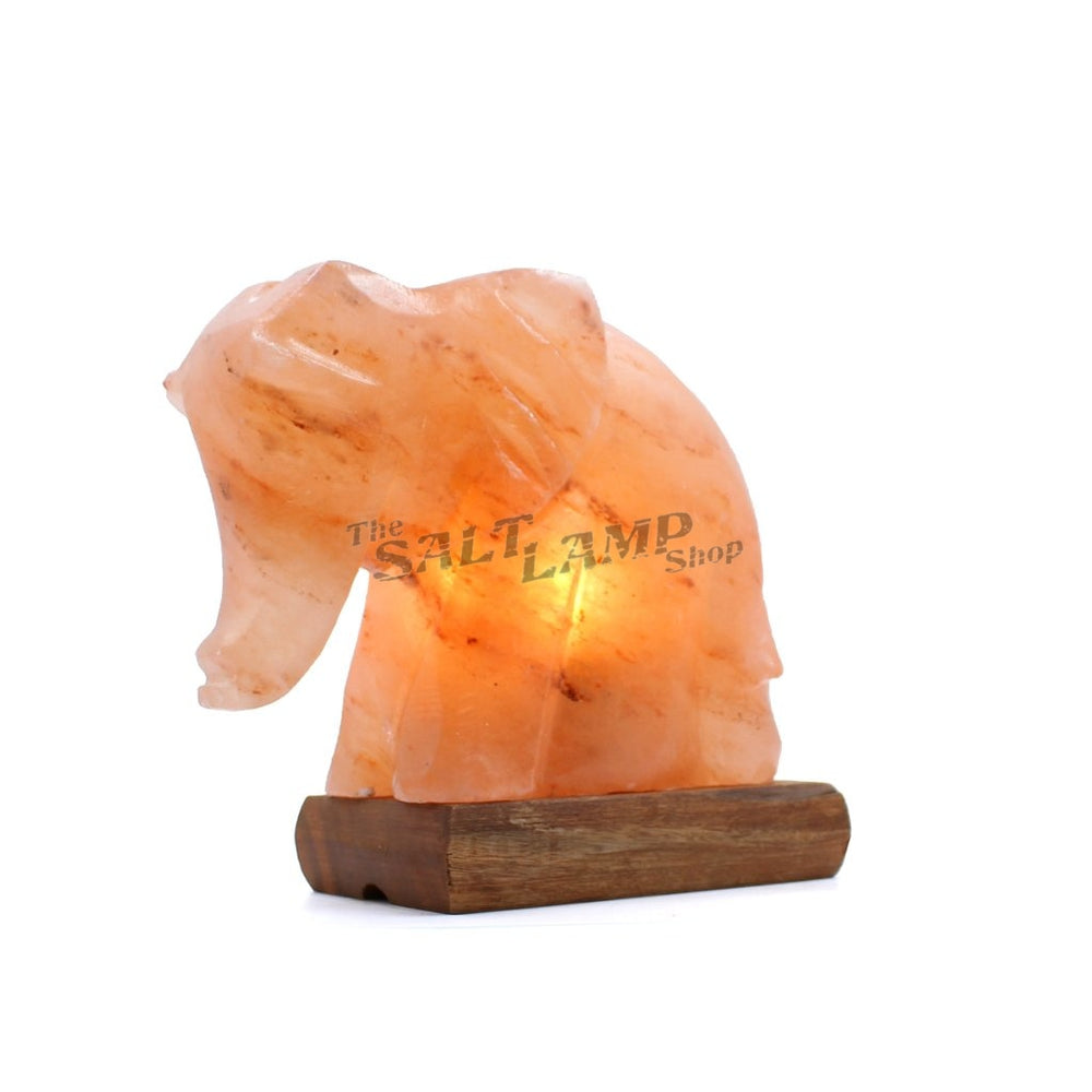 Elephant Salt Lamp Crafted