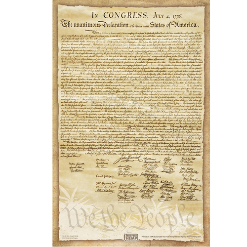 Declaration of WE THE PEOPLE - Poster