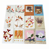 "3"" x 4"" Greeting Cards"