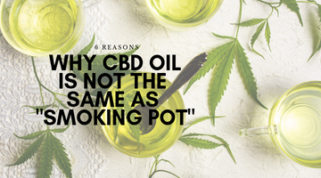 6 Reasons Why CBD Oil Is Not The Same As