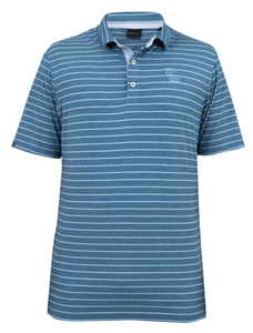 Men's Dunning Polo