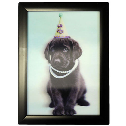 image of iconic 3d 25x35cm birthday puppy