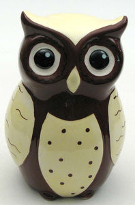 Ceramic Owl Coin Bank