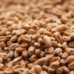 Wheat Malt (LB)
