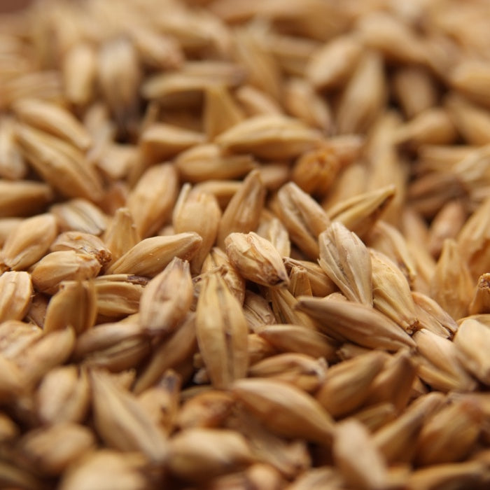 Acidulated Malt (LB)
