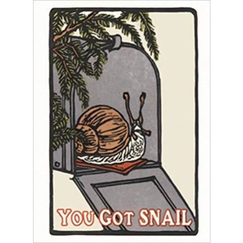 You Got Snail Boxed: Boxed Set of 6 Cards - Office/School/Craft Supplies