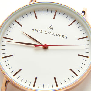 The White One - Amis D'Anvers