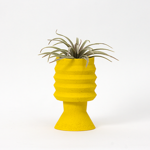 Plant Pot ~ Yellow