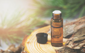 What Is Pine Bark Extract Used For?