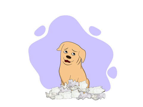 Benadryl For Dogs Your Go To List Of Dos Donts Honest Paws