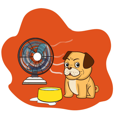 Protect Your Pup against Heat Stroke in Dogs