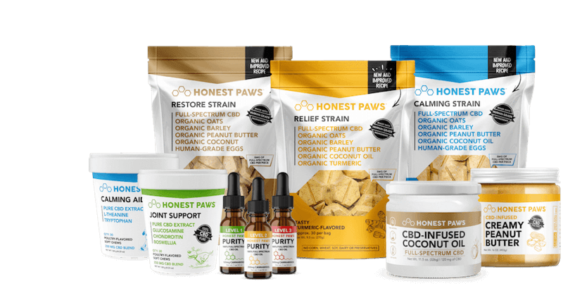 Delicious, <i>Mouth-Watering,</i><br>CBD  Oils & Treats <br> That Your Dog or Cat Is <br><span>Guaranteed To Love!</span>