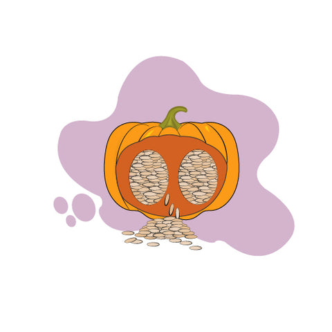 health benefits of pumpkin seeds for dogs