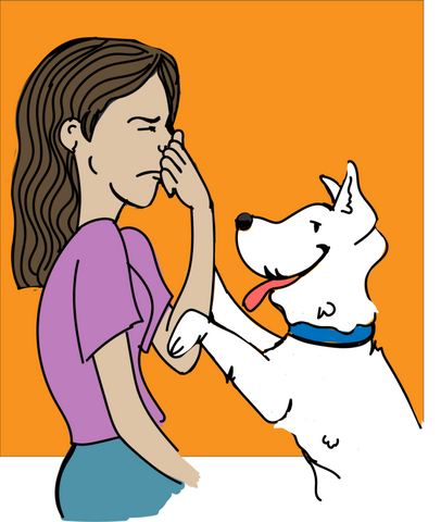 dog bad breath