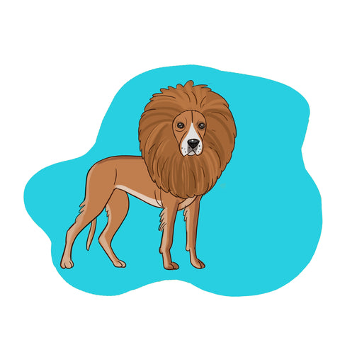 dog halloween costume - lion costume