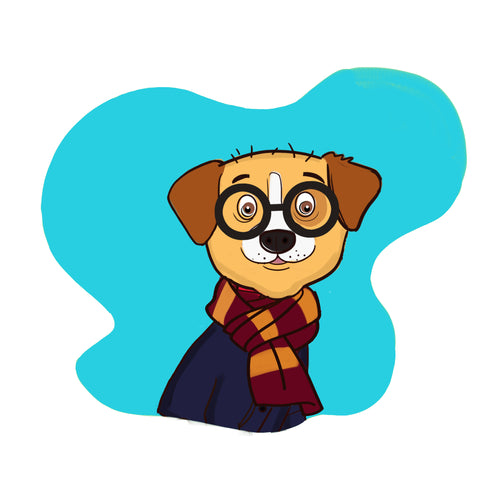 dog halloween costume - harry potter costume