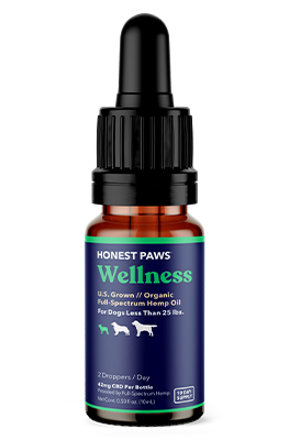 CBD Oil for Dogs Trial Pack - Wellness
