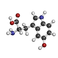 5-HTP (5-Hydroxytryptophan)