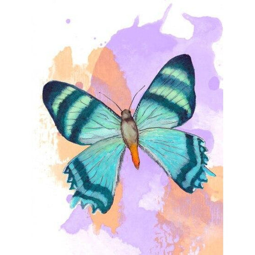 Butterfly Bloom - DIY Oil Painting on Canvas - Paint By Numbers-EasyWhim